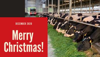 Merry Christmas Riberi 2020